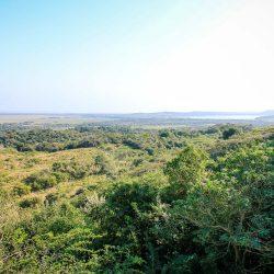 eMfabeni Lookout, iSimangaliso Wetland Park