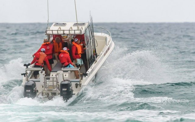 Wave Dancer fishing charters, deep sea fishing, kwazulu-natal, south africa, st lucia