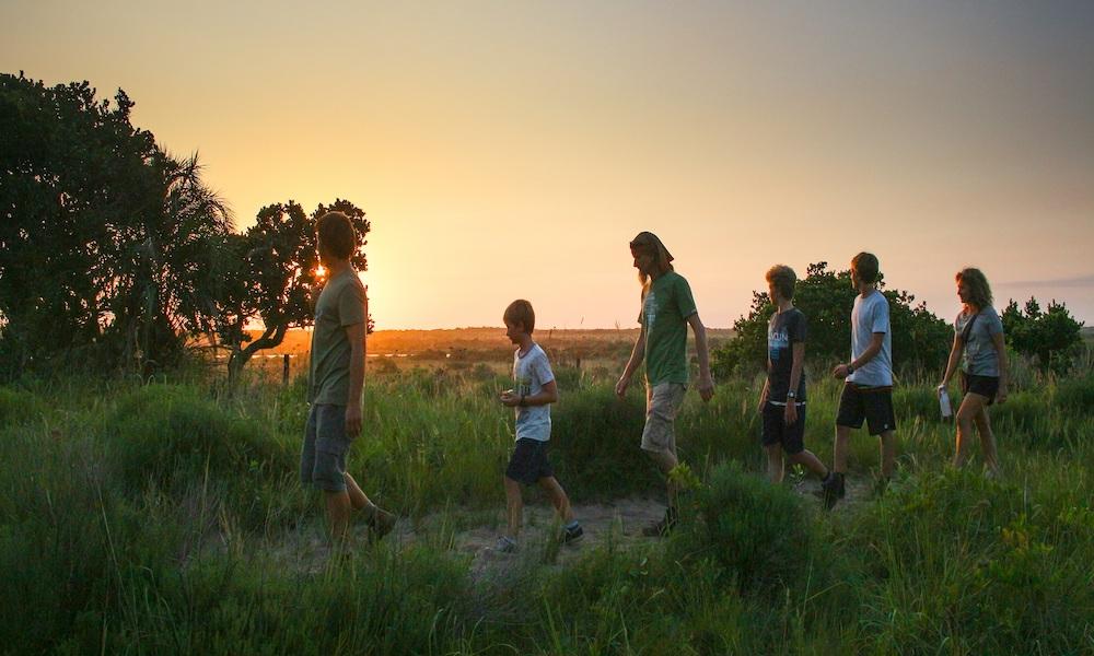 guided walking safari