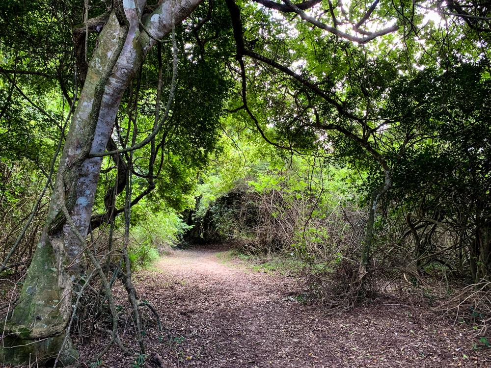 iGwalagwala trail